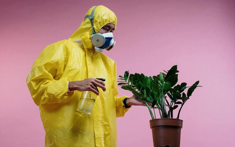 कोरोना वायरस के स्वरूप में बदलाव इसे बना रहा है और भी घातक